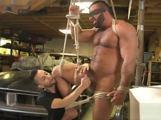 hunky Hunky hairy muscular bear dominated hairy
