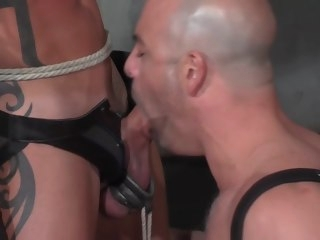 slave A slave with stretched balls drinks his Masters piss stretched