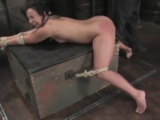 bound Bound, Ass Whipped forced organism ass