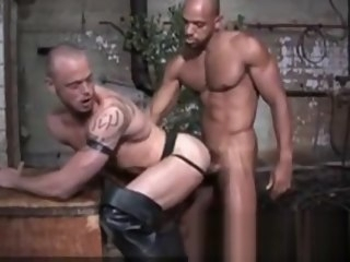 sex Best sex video gay Muscle watch watch show video