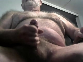 bear Bear Daddy, webcam daddy